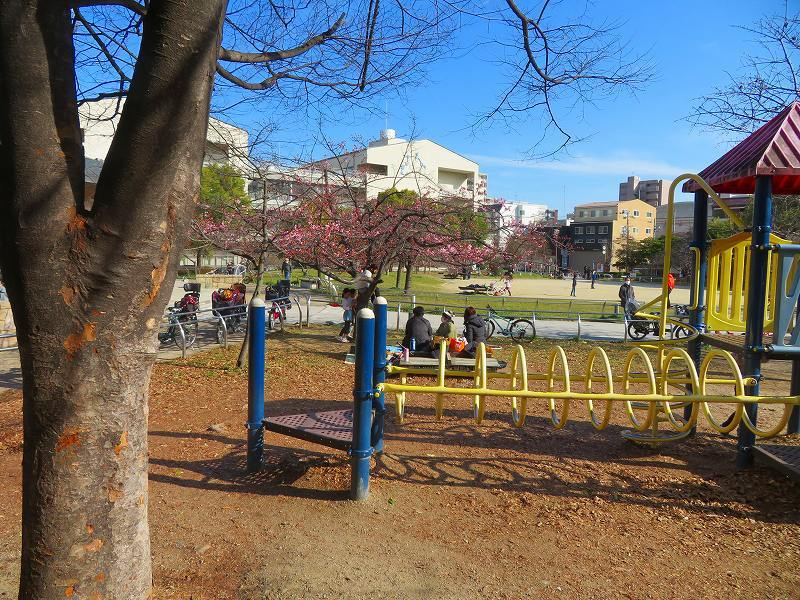 京都ぶらり街歩き(④松原公園の桜)20210228_e0237645_10513164.jpg