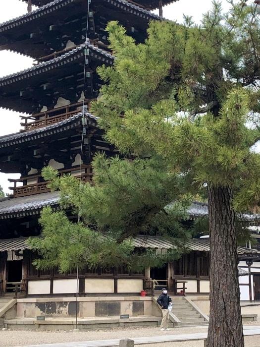 奈良の旅 14 贅沢なひととき 法隆寺_a0092659_17130280.jpeg