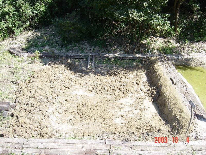うみべの森の歴史⑯「2003年10月の活動」_c0108460_11454440.jpg