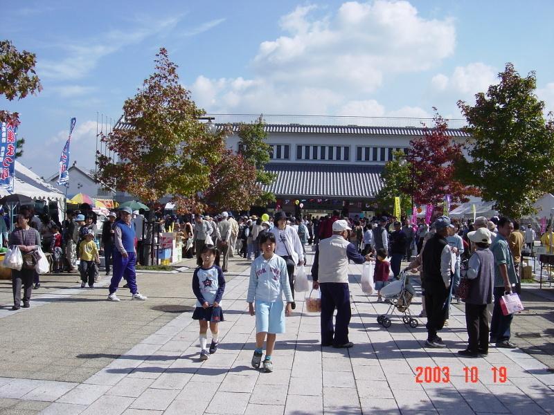 うみべの森の歴史⑯「2003年10月の活動」_c0108460_11514317.jpg