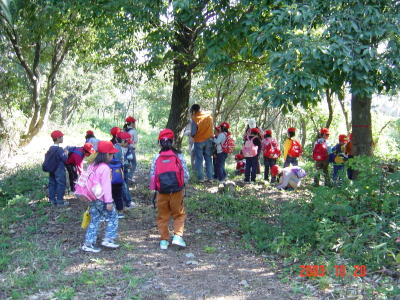 うみべの森の歴史⑯「2003年10月の活動」_c0108460_12004283.jpg