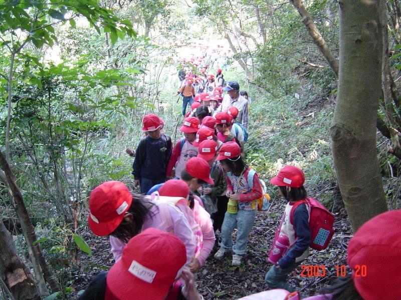 うみべの森の歴史⑯「2003年10月の活動」_c0108460_12043354.jpg