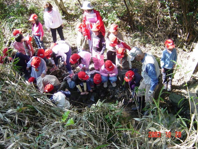 うみべの森の歴史⑯「2003年10月の活動」_c0108460_12043376.jpg