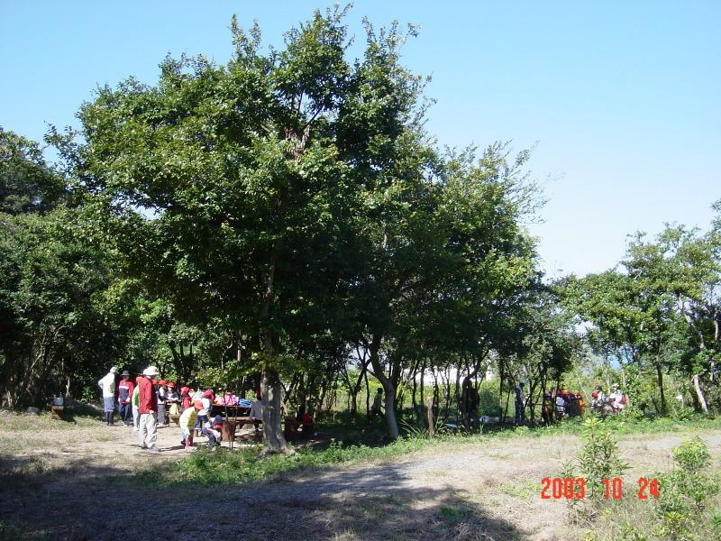 うみべの森の歴史⑯「2003年10月の活動」_c0108460_12121397.jpg