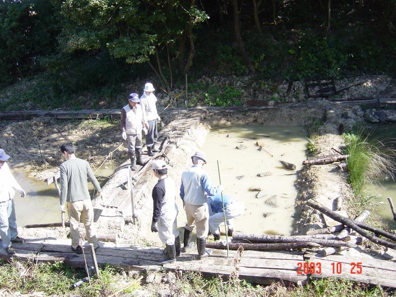 うみべの森の歴史⑯「2003年10月の活動」_c0108460_12150553.jpg