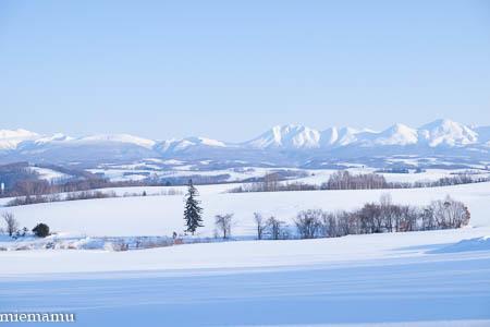 静かな冬景色~1月の美瑛_d0340565_20192436.jpg