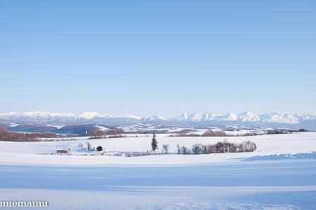 静かな冬景色~1月の美瑛_d0340565_20193099.jpg