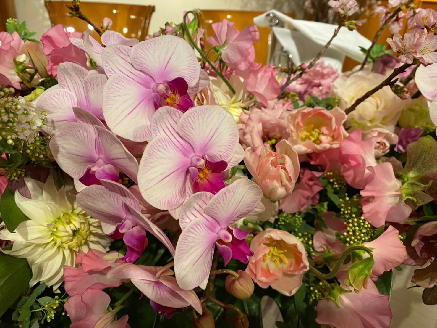 桜に囲まれて_b0196913_16021135.jpeg