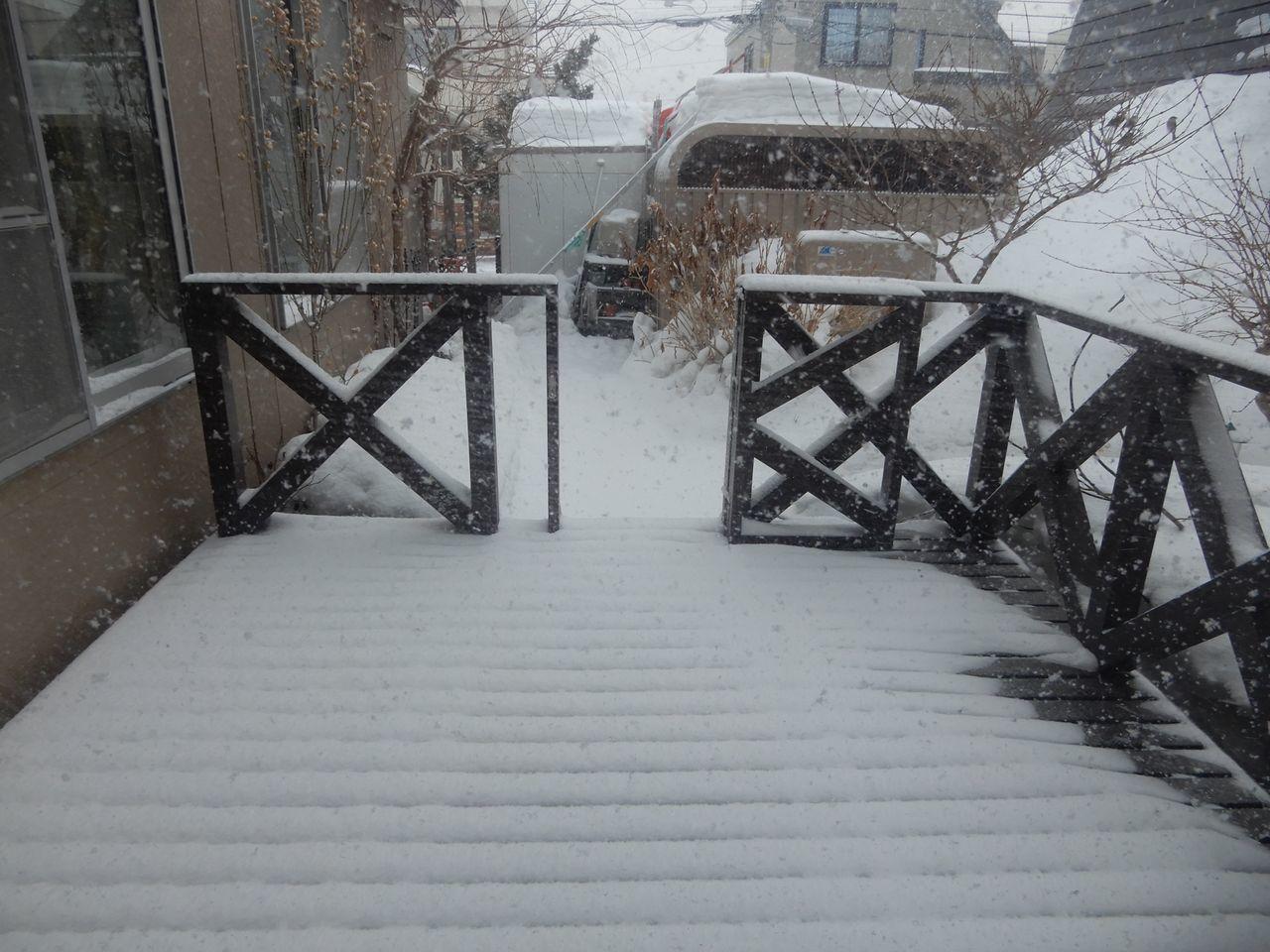 春の暖かさから一転して真冬日に逆戻り_c0025115_21443142.jpg