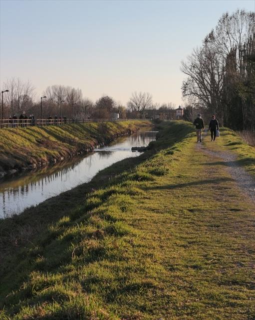 最近みつけた、近所の散歩コース_d0047461_06141574.jpg