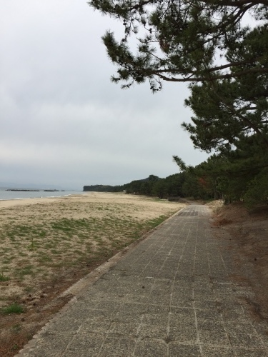第1回 奈多狩宿海岸遊歩道ウォーク_a0234142_19594720.jpeg