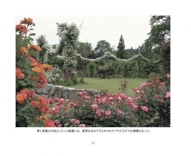 福島双葉ばら園フォトエッセイ『失われた福島のバラ園』_a0094959_16122301.jpg