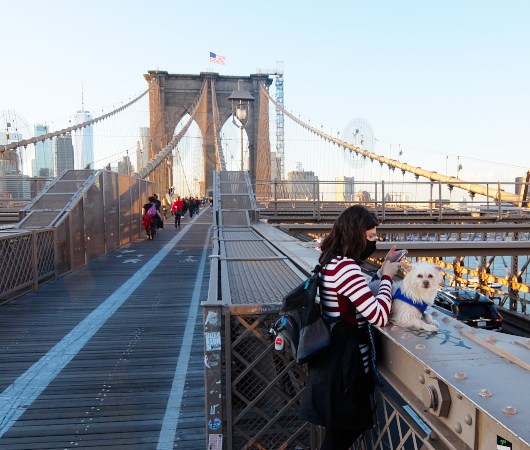ガイド的ナレーション付きの「ブルックリン・ブリッジを歩いて渡ってみた」動画_b0007805_06360979.jpg