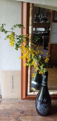 Il giorno della Mimosa 12_e0107030_22302594.jpg