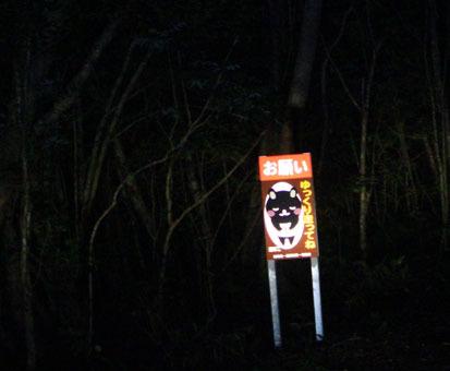 アマミノ夜行性の生き物およそ3~4匹_d0051533_23304306.jpg