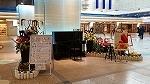 ♪デュオ神戸の春♪_d0118053_13534988.jpg