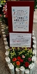 ♪デュオ神戸の春♪_d0118053_13542031.jpg