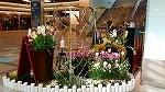 ♪デュオ神戸の春♪_d0118053_13571118.jpg