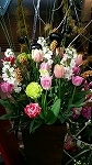 ♪デュオ神戸の春♪_d0118053_13571465.jpg