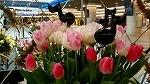♪デュオ神戸の春♪_d0118053_14093602.jpg