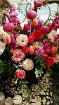 ♪デュオ神戸の春♪_d0118053_14094664.jpg