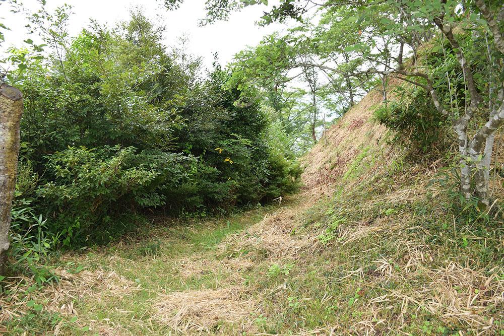 周匝茶臼山城跡を歩く。 その2 <主郭・腰曲輪・空堀>_e0158128_17584830.jpg