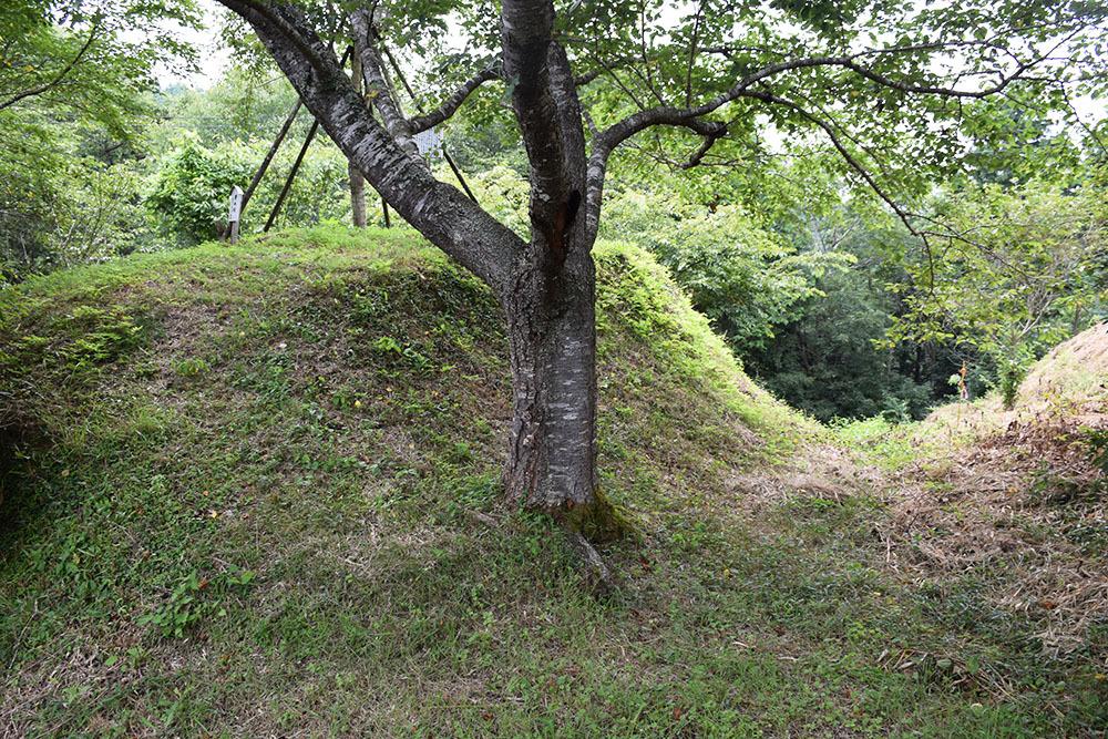 周匝茶臼山城跡を歩く。 その2 <主郭・腰曲輪・空堀>_e0158128_18085708.jpg