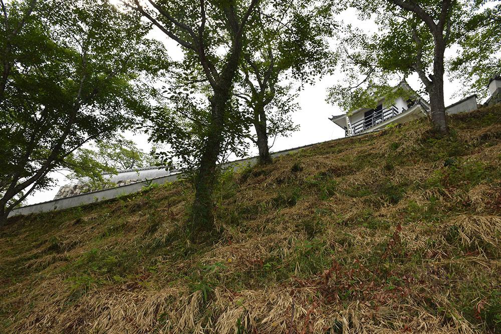 周匝茶臼山城跡を歩く。 その2 <主郭・腰曲輪・空堀>_e0158128_18190832.jpg