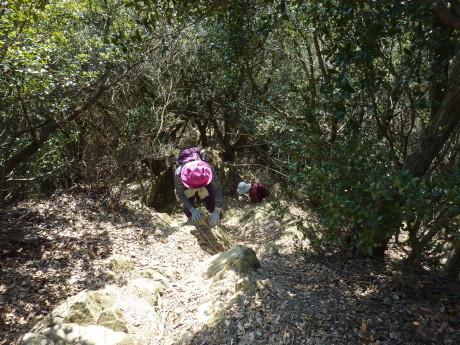 梅と河津桜を見に行こう『塩屋から板宿』_c0218841_11360292.jpg