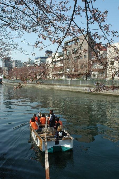 2021年春 今年は、ボートからのお花見はいかがでしょうか_c0027849_15182849.jpg