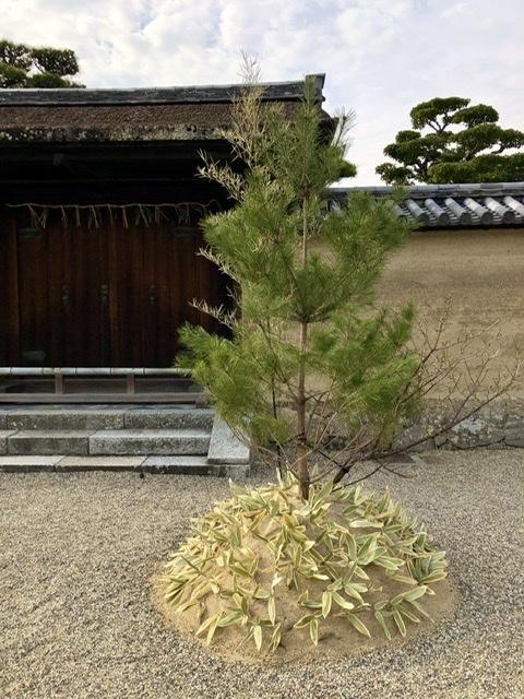 奈良の旅 16  法隆寺夢殿_a0092659_15193271.jpeg