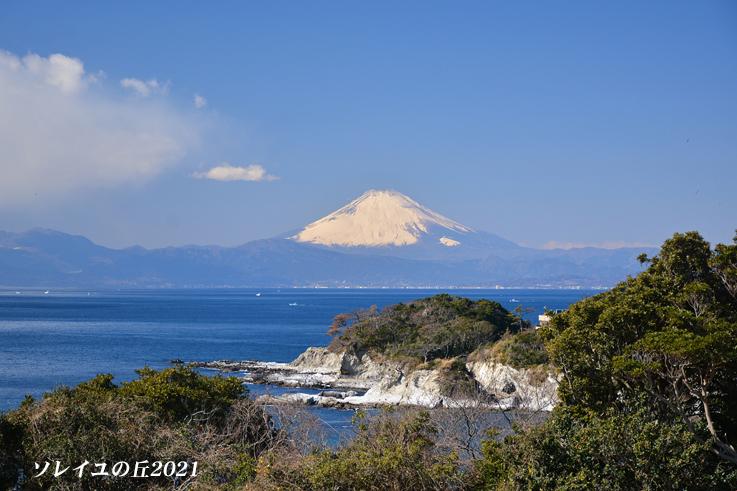 園内で富士山  『ソレイユの丘2021』_d0251161_15143963.jpg