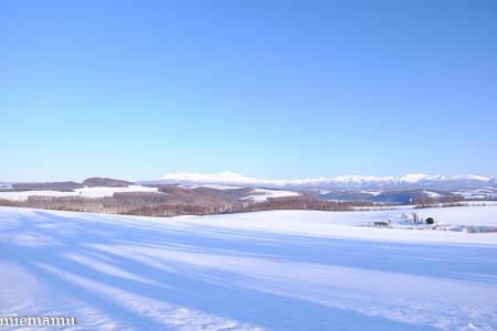 静かな冬景色Vol.2~1月の美瑛_d0340565_20123727.jpg