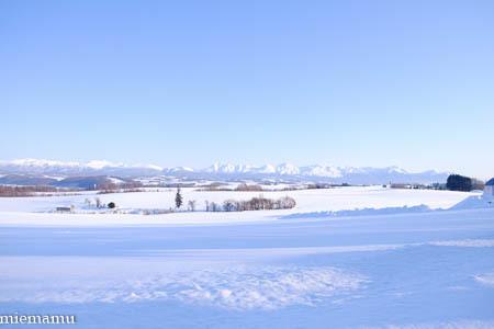 静かな冬景色Vol.2~1月の美瑛_d0340565_20124342.jpg