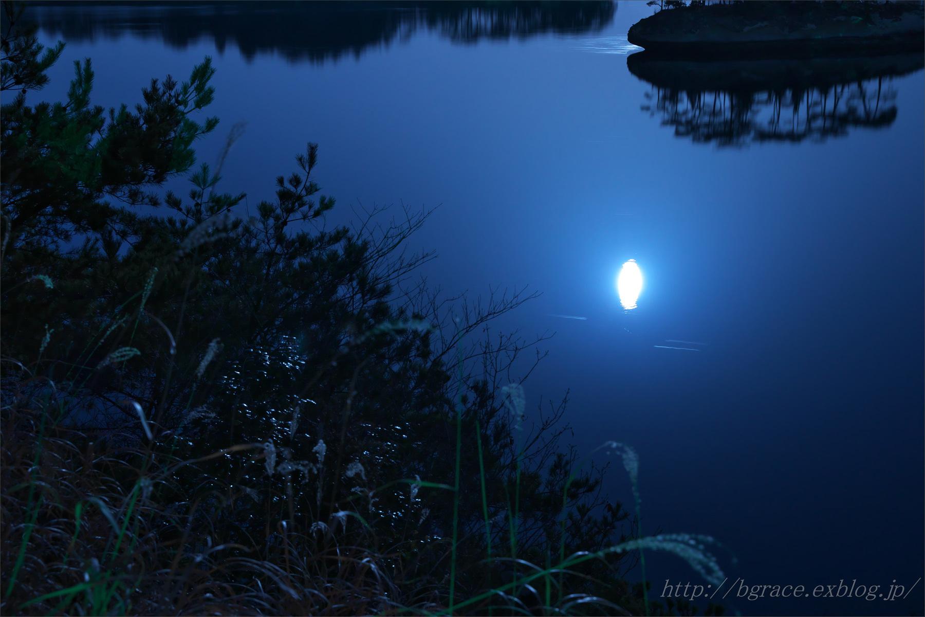 松島 月光浴.2_b0191074_20503619.jpg