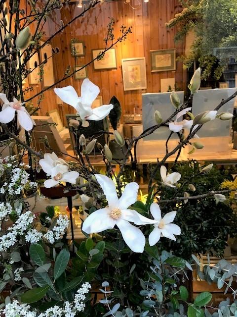 花屋つくしさんでの個展、無事終了しました。_c0138704_09245509.jpg