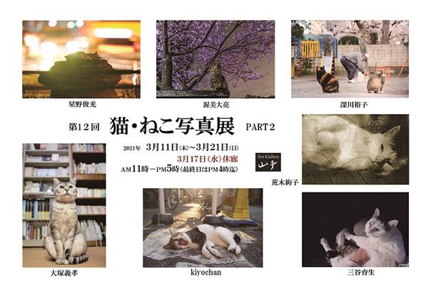 第12回 猫・ねこ写真展 PART2_c0194541_00242803.jpg