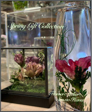 Spring Gift Collection 7日目_d0126721_22575402.jpg