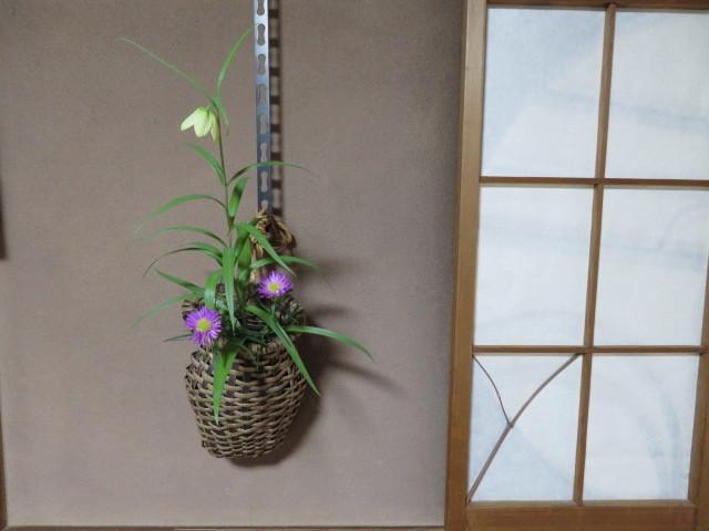 春緩む花々 バイモユリ_f0329849_13284241.jpg