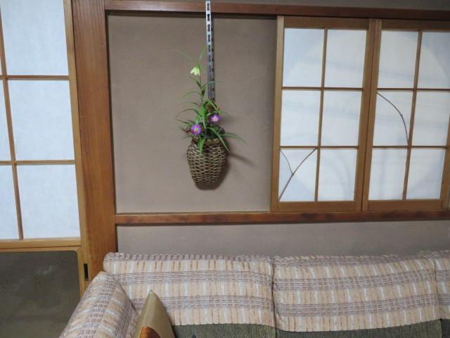 春緩む花々 バイモユリ_f0329849_13293553.jpg