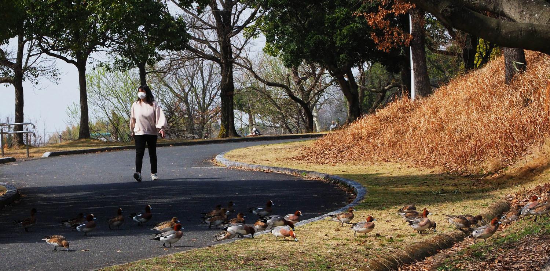 蜻蛉公園_e0254493_10290153.jpg