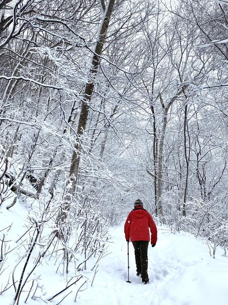 """2021年1月 『札幌の裏庭を登る、そして食べる』 January 2021 \""""Winter Hiking and Eating in Sapporo\""""_c0219616_09583463.jpg"""