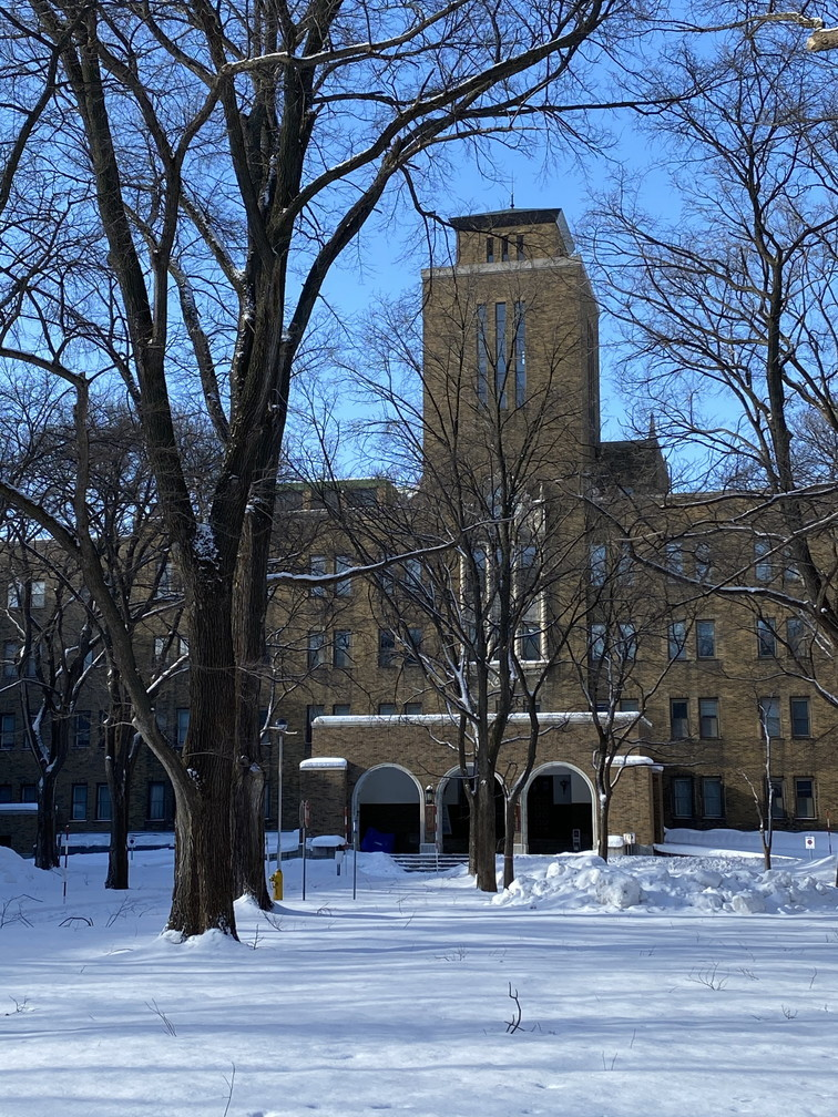"""2021年1月 『新雪の北大キャンパス』 January 2021 \""""Hokkaido University in the White Snow\""""_c0219616_10443601.jpg"""