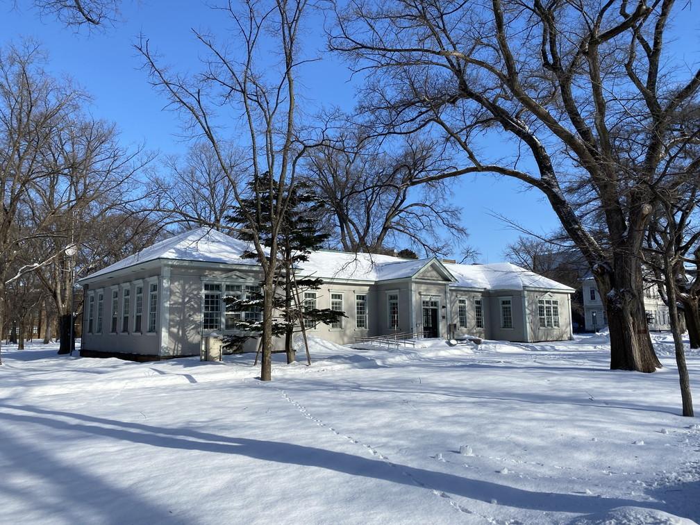 """2021年1月 『新雪の北大キャンパス』 January 2021 \""""Hokkaido University in the White Snow\""""_c0219616_10443614.jpg"""