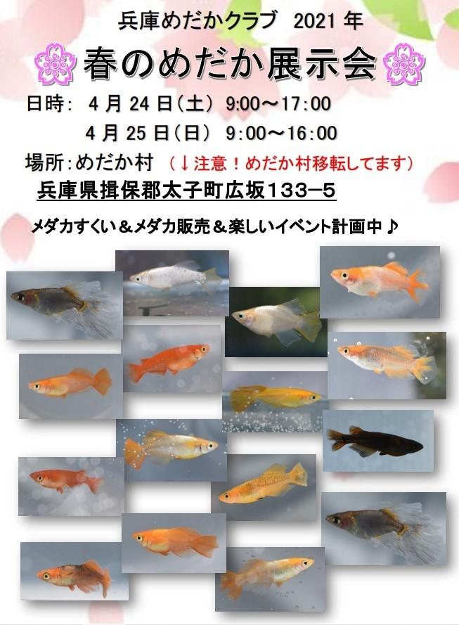 2021年春の展示会についてお知らせ_a0125030_11294884.jpg