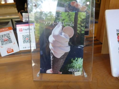 熱海「来宮神社 五色の杜」へ行く。_f0232060_23442851.jpg