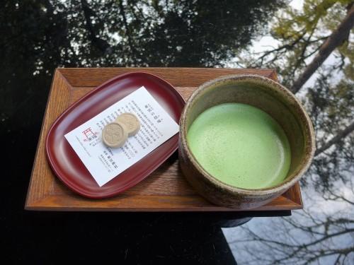 熱海「来宮神社 五色の杜」へ行く。_f0232060_23462685.jpg