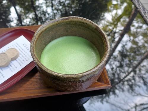 熱海「来宮神社 五色の杜」へ行く。_f0232060_23463143.jpg