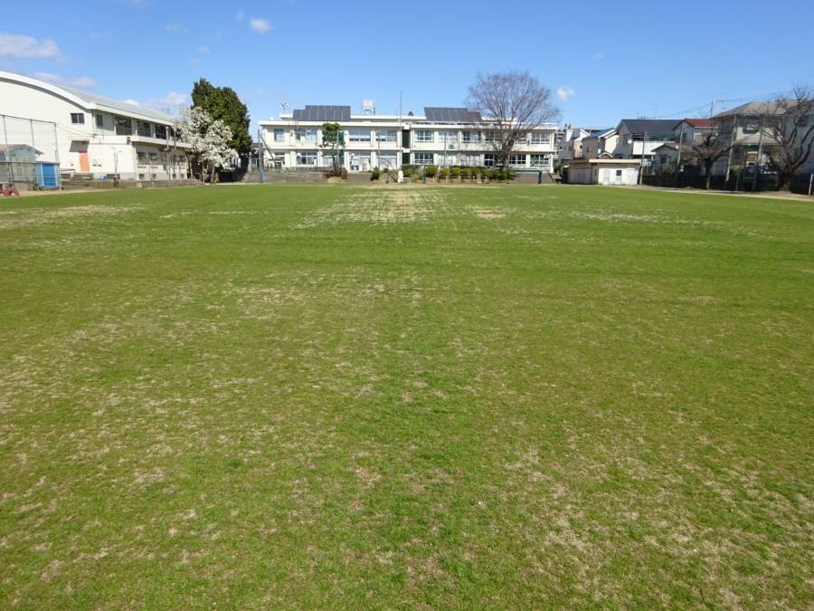 R3.3月の13小校庭芝生その2_f0059673_16482116.jpg