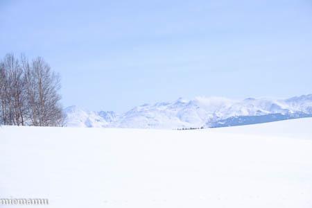 まだまだ、冬の装いの十勝岳連峰~3月の美瑛_d0340565_19482445.jpg
